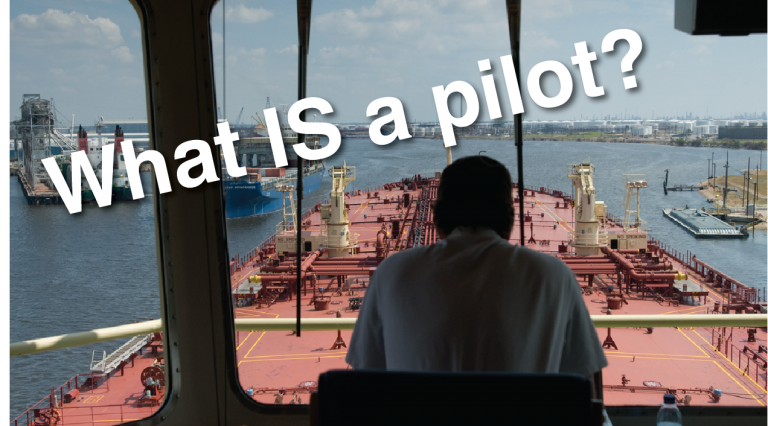 What IS a Pilot?